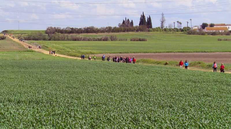 Vía Verde Los Alcores de Sevilla